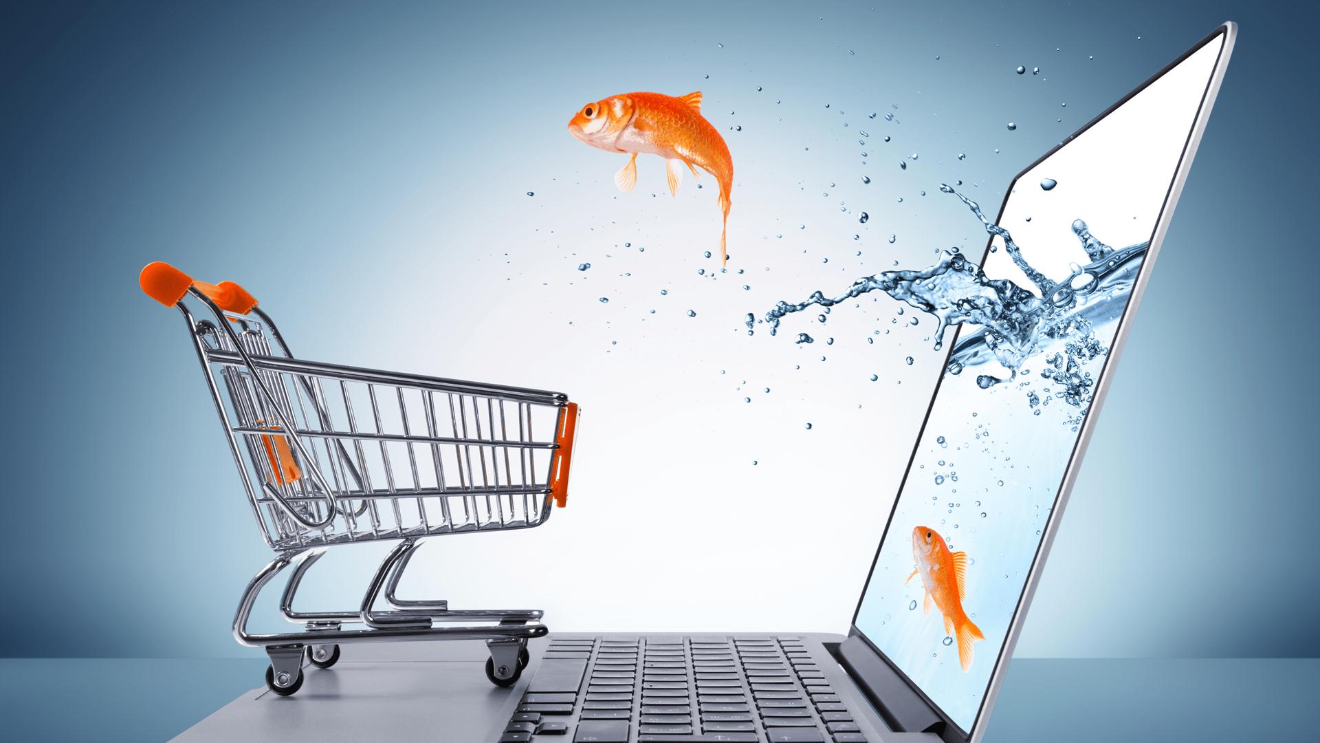 O e-commerce e a expansão das possibilidades de consumo